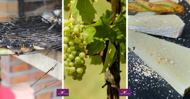 rutas gastronómicas por España